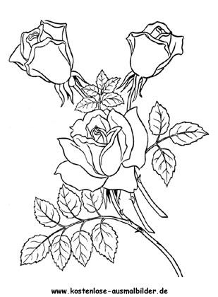 rosen blumen ausmalen malvorlagen rosen. Black Bedroom Furniture Sets. Home Design Ideas