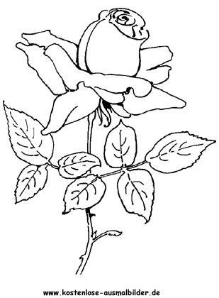 ausmalbilder rosen | ausmalbild rosen 4