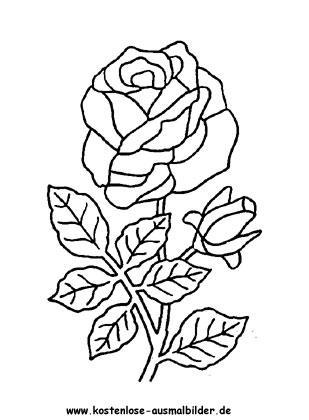 Ausmalbilder Malvorlagen Rosen 7