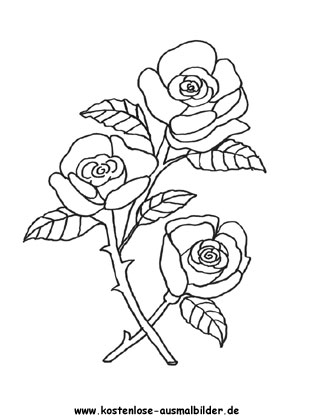 Ausmalbilder Malvorlagen Rosen 9