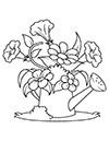 Ausmalbilder Blumen in der Gießkanne