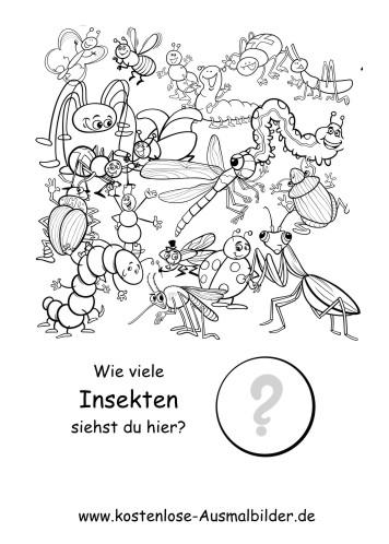 Zählen lernen | Wie viele Insekten - Lernspiele Kindergarten ...