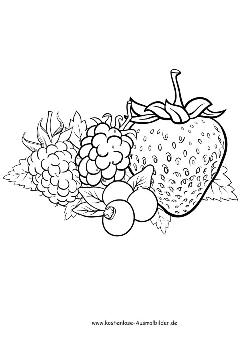 ausmalbilder rote früchte - lebensmittel zum ausmalen