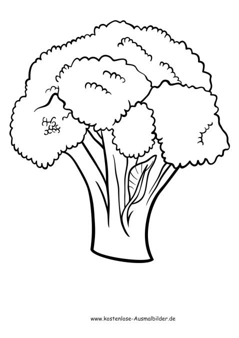 Gemüse Bilder Zum Ausdrucken : ausmalbilder blumenkohl lebensmittel zum ausmalen malvorlagen gemuese ~ Buech-reservation.com Haus und Dekorationen