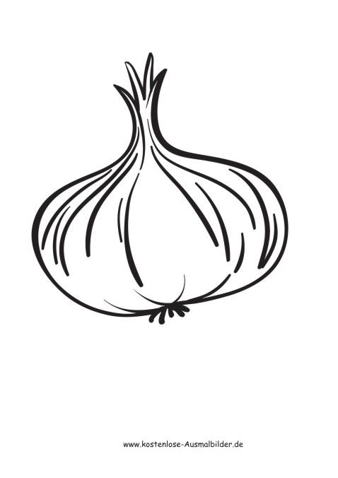 Tomate ausmalbild  Ausmalbilder Zwiebel - Lebensmittel zum ausmalen | Malvorlagen Gemuese