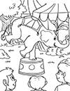 Ausmalbild Zirkus Elefant balanciert