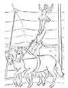 Ausmalbild Zirkuspferde mit Artisten